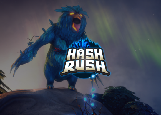 hashrush portfolio